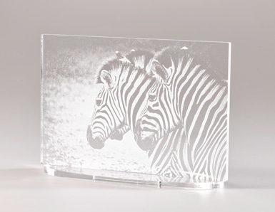 laser acrylic inkxe
